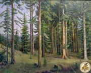 Елово-пихтовый лес