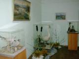 Выставка «Наши соседи»