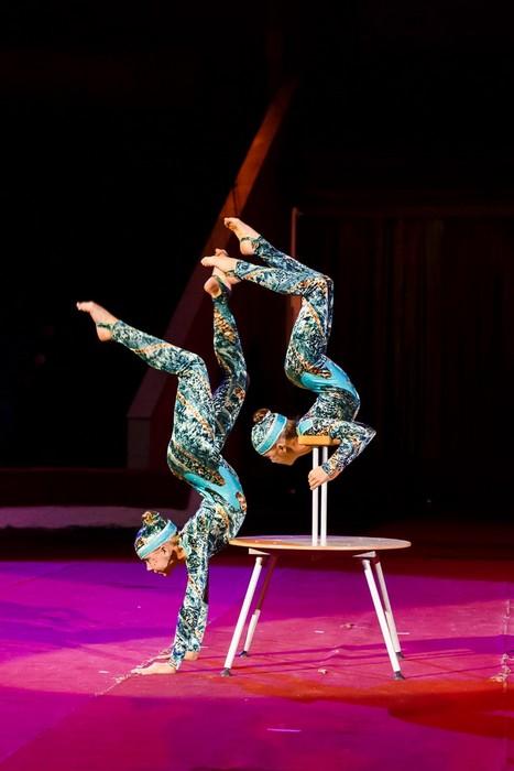 Продолжается прием заявок на XIII Всероссийский фестиваль любительских цирковых коллективов «Сальто в будущее»
